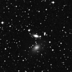 NGC 5011B