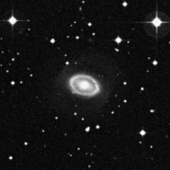 IC 2529
