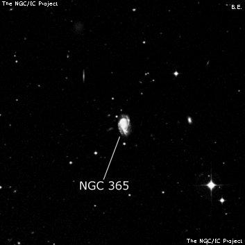 NGC 365