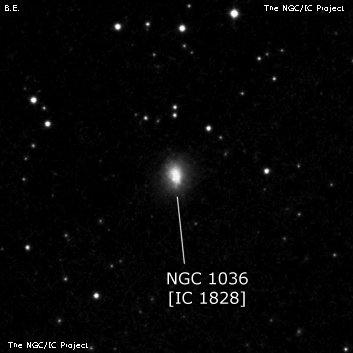 NGC 1036