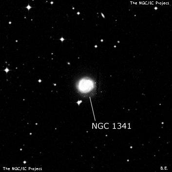 NGC 1341