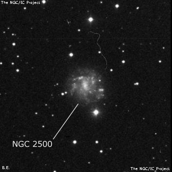 NGC 2500