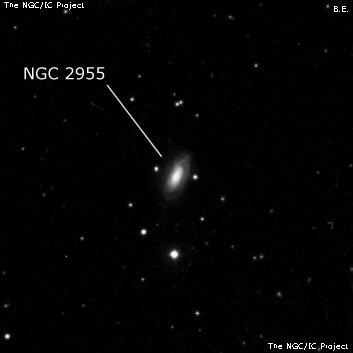 NGC 2955