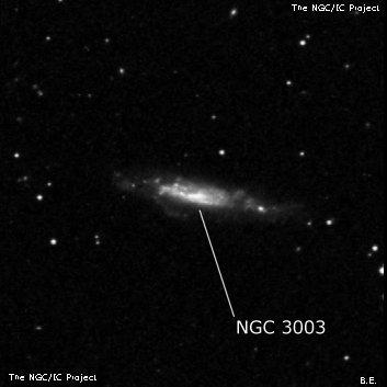 NGC 3003