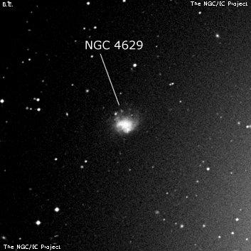 NGC 4629