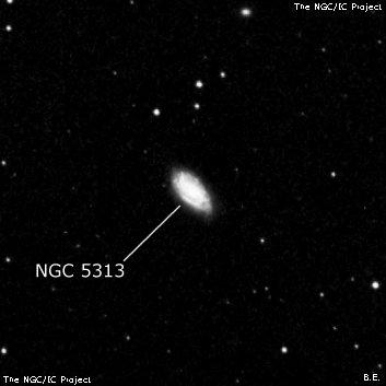 NGC 5313