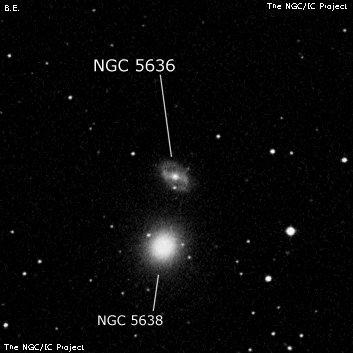 NGC 5636