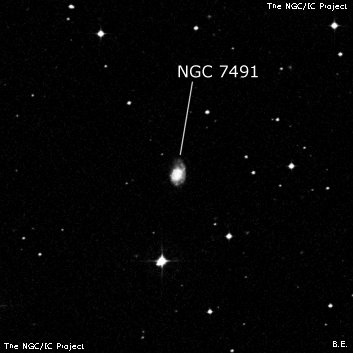 NGC 7491